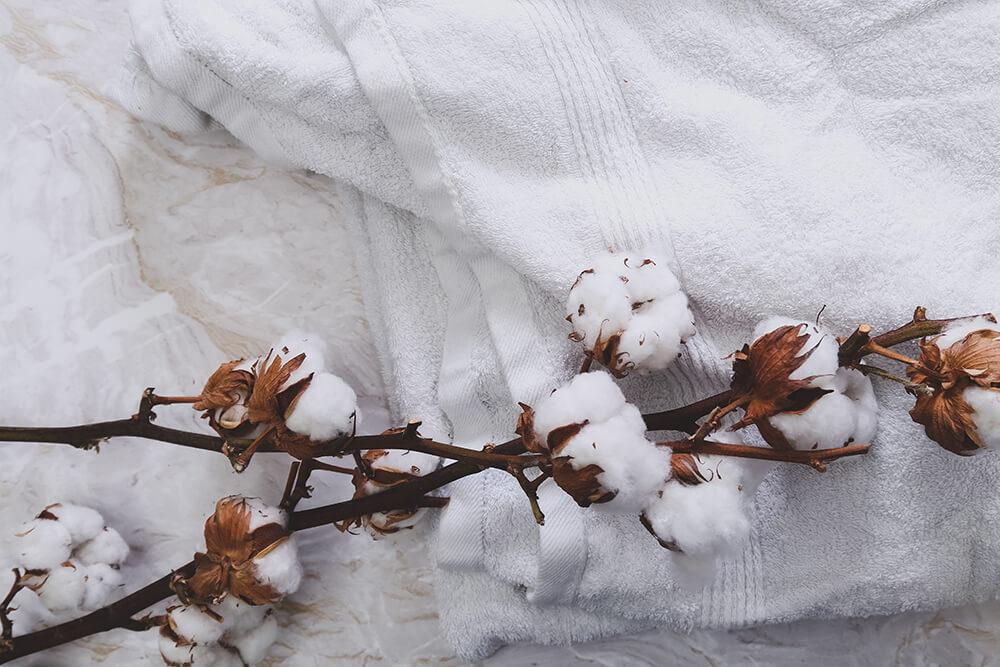 Khăn bông hữu cơ được sản xuất từ chất liệu là bông được trồng bằng phương pháp hữu cơ